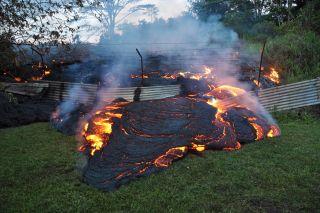 Pahoa lava flow and fence