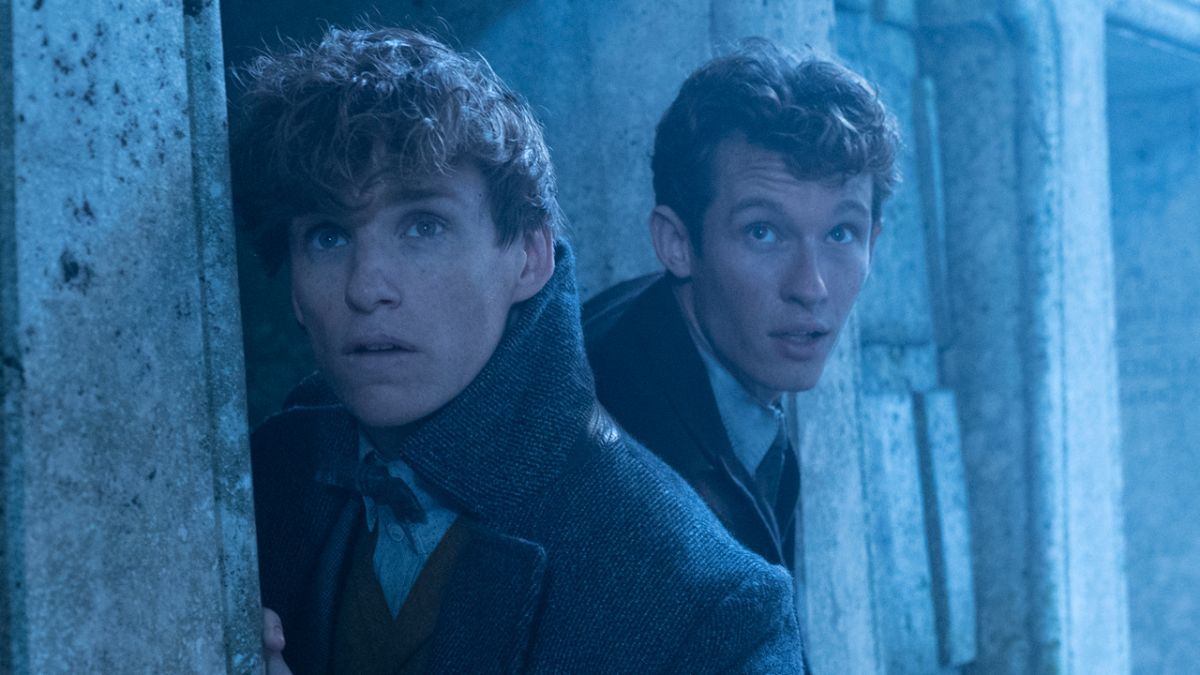 The Scamander brothers join forces in this exclusive new Fantastic Beasts: The Crimes of Grindelwald image