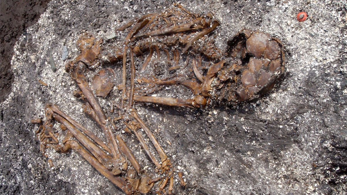 Ancient bones reveal previously unknown Japanese ancestors