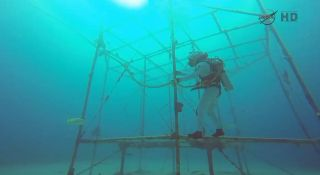 NASA Extreme Environment Mission Operations (NEEMO) Mission