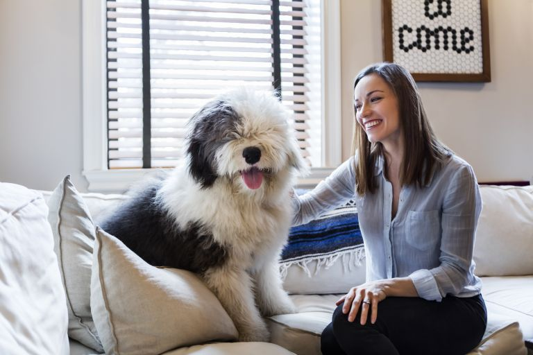 woman with sheep dog on a sofa