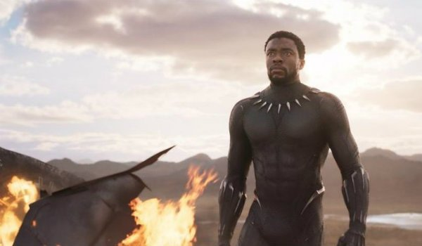 T'Challa Black Panther battle scene