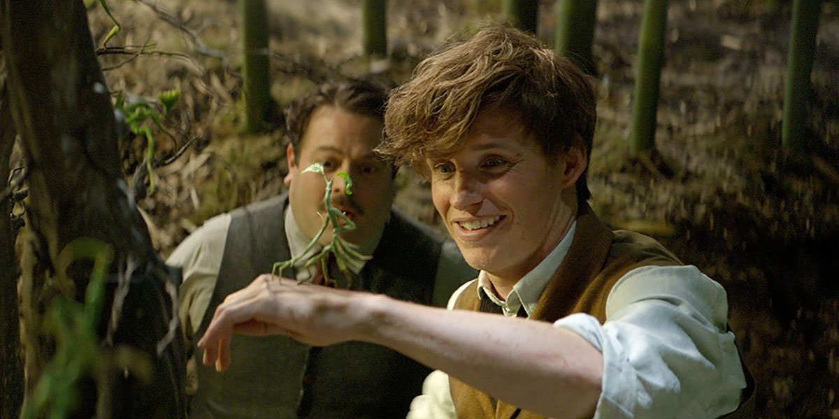 Fantastic Beasts 2 Newt Scamander and Stick