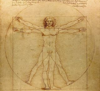 Illustration of the Vitruvian man.