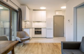 Interior of a modern micro apartment annexe with living room and kitchenette