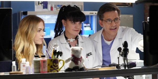 ncis season 15 abby pauley perrette