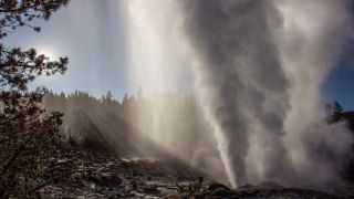 Yellowstone's Steamboat Geyser blows steam during a 2019 eruption.