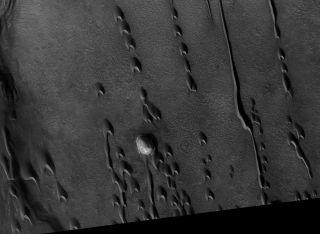 Mars sand dune footprints