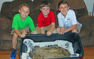 Shawn Sellers, left, Michael Mahalitc and Caid Sellers, display the lower left jawbone of a mastodon they found in a plowed up area of their family's property in the Bovina area in Vicksburg, Miss.