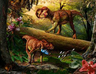 triceratops ancestor