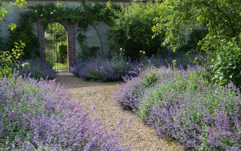 How To Choose The Best Gravel For Your Garden