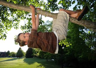 kid climbing and hanging from tree