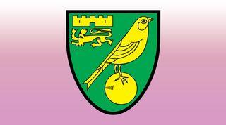 Norwich City pink