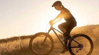 Best women's mountain bikes under £500