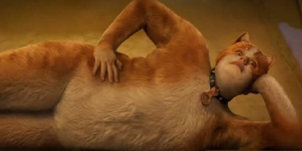 Rebel Wilson 'Loved' The Viral Response To First Cats Trailer