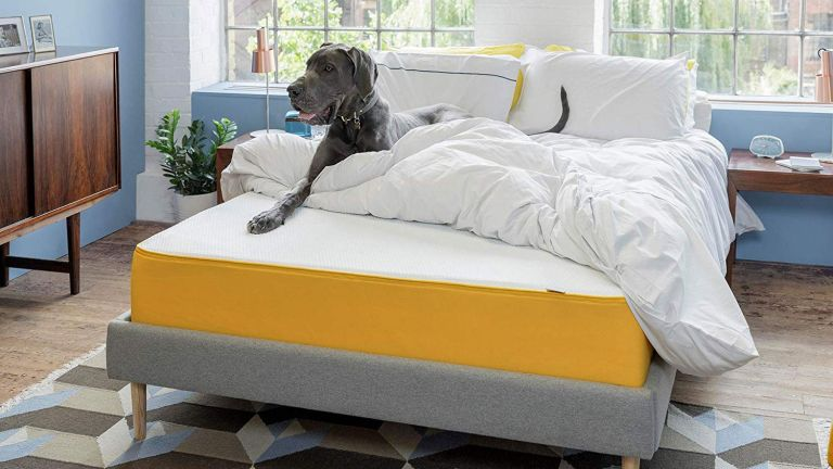 Eve mattress discount codes and deals