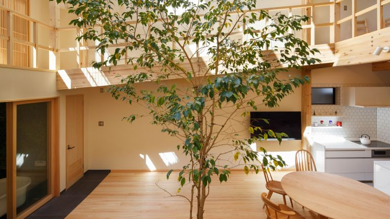House tour of an open plan Japanese home