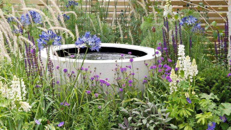 how to keep a water feature clean: Water feature and soft planting in The Wellbeing of Women Garden at RHS Hampton Court Palace Flower Show 2015