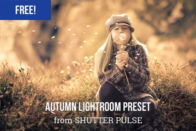 65 Free Lightroom Presets: The best presets for portraits