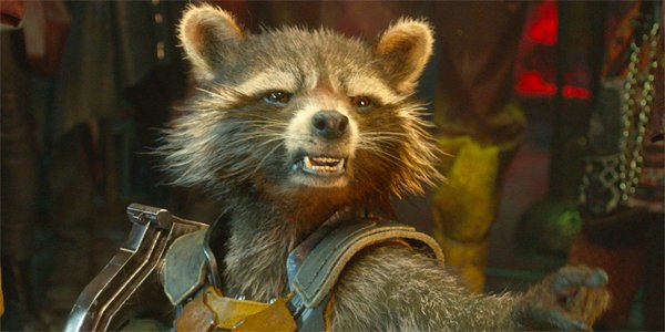 Rocket Raccoon Is Getting A Fleshed-Out Backstory, What Will We Learn? -  CINEMABLEND