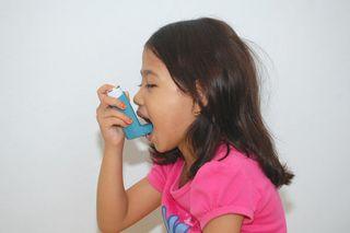 asthma-inhaler-101007-02