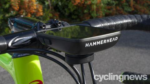 Hammerhead Karoo