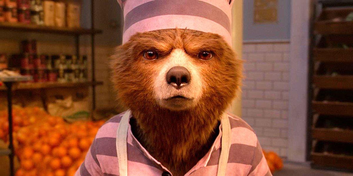 Paddington 2 hard stare in prison jumpsuit