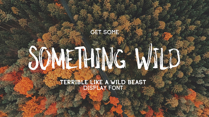 Free handwriting fonts: Something Wild