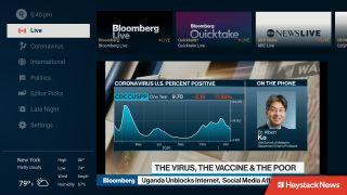 Haystack News Bloomberg