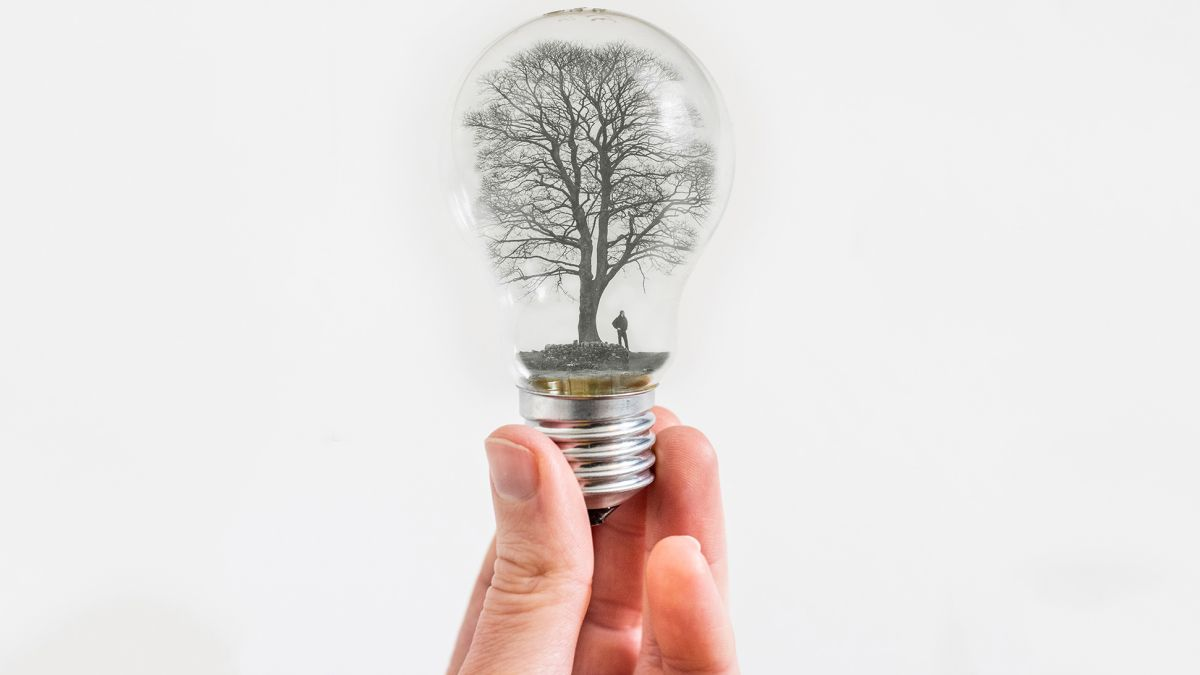 Have a light bulb moment! Create a surreal scene with this Photoshop project