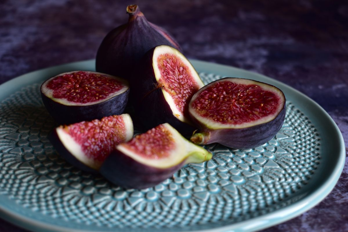 How to prune a fig tree – everything you need to know