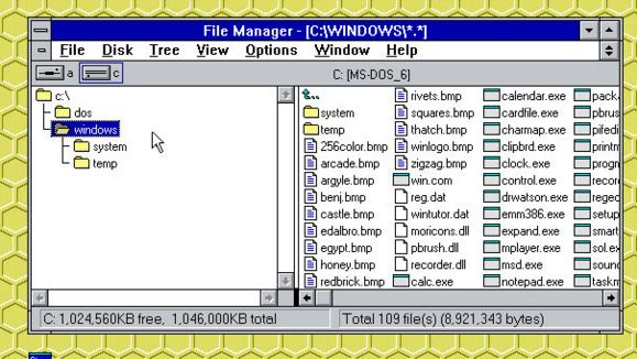 Windows 3 0 File Manager on Windows 10 triggers nostalgia