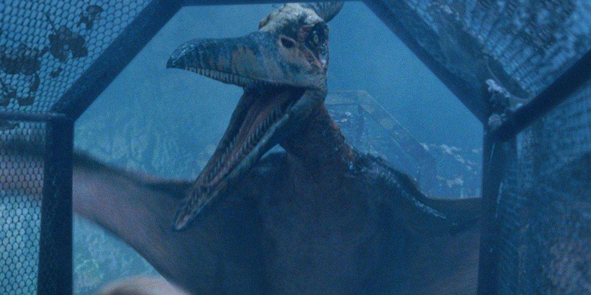 A Pteranodon