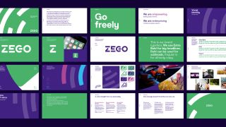 Examples of Zego typography