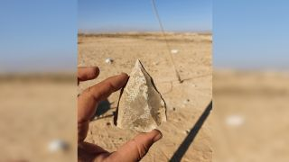 One of the distinctive stone tools, made with an ancient flint-knapping technology known as Nubian Levallois, found at the archaeological site in the Negev Desert.