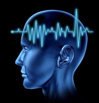 brain circulation schizophrenia