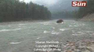 woolly mammoth crossing river