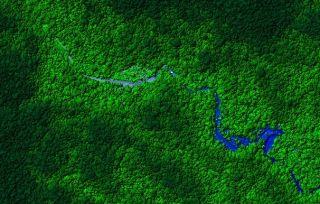 View of Honduras rainforest, taken from the LiDAR plane