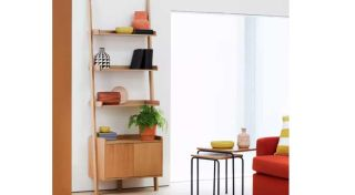 best bookshelves: an image of leaning ladder bookcase