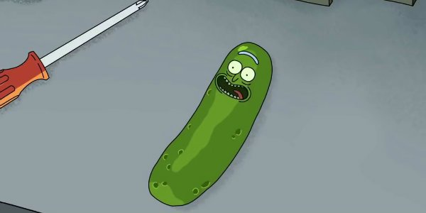 Pickle Rick and morty