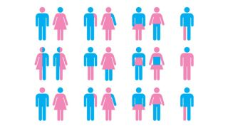 a graphic showing gender variations