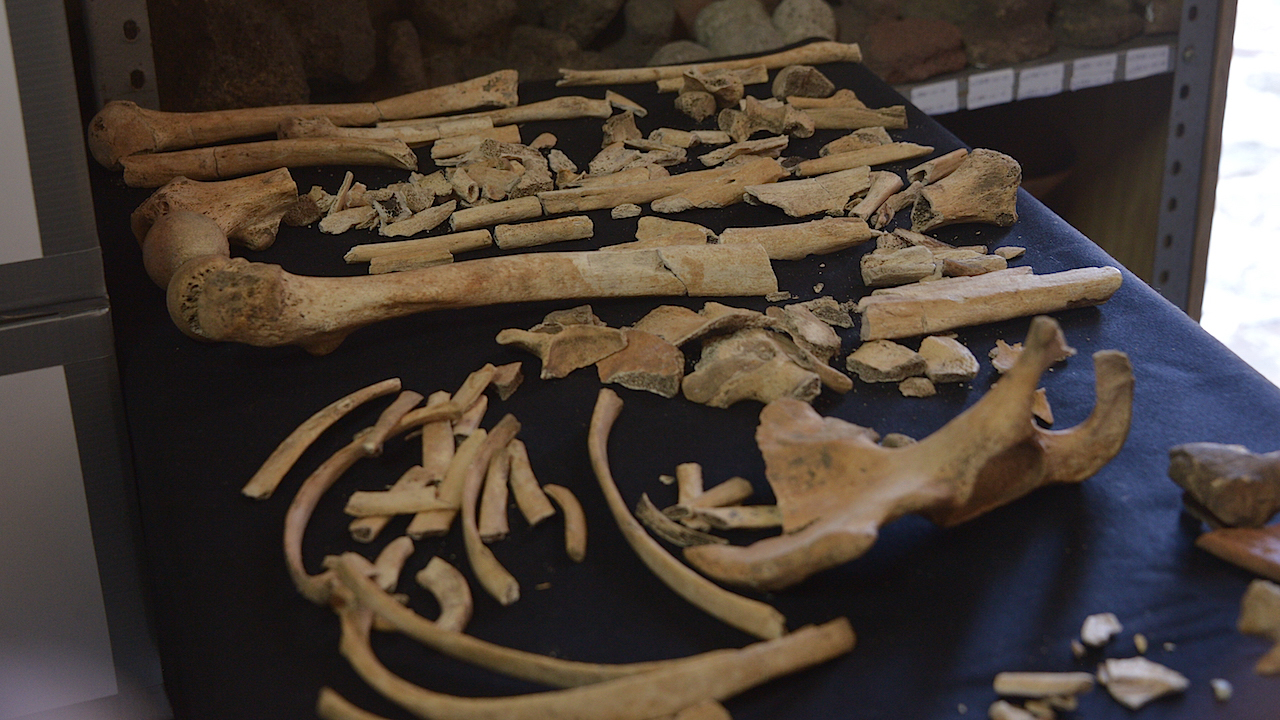 Women and children who tried to hide were murdered and mutilated, archaeologists learned from bones.