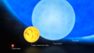"This artist's impression shows the relative sizes of young stars, from the smallest ""red dwarfs"", weighing in at about 0.1 solar masses, through to the 300 solar mass star named R136a1."