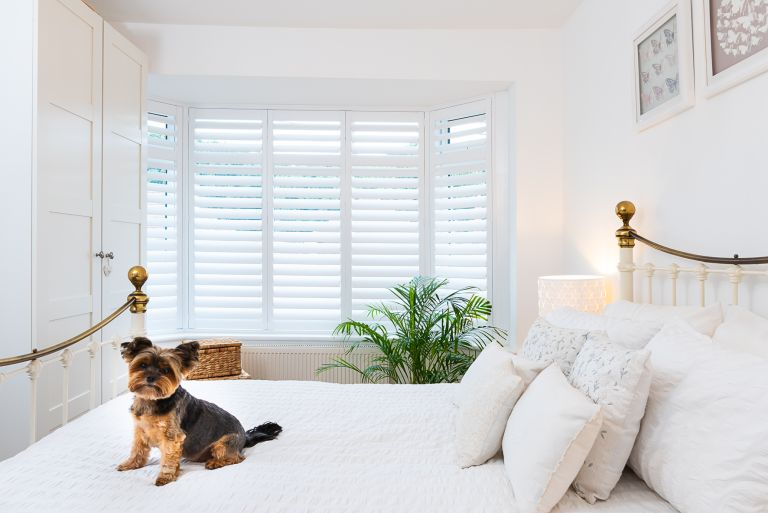 white window shutters in a white bedroom