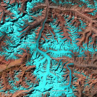 The Fedchenko Glacier, seen in this false-color image taken by the Landsat 5 satellite on Oct. 2, 2011, is 47 miles (77 kilometers) long.