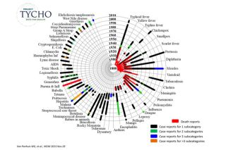 Circle graph of infectious diseases in US