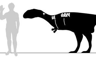 an illustration of a dinosaur discovered on madagascar.