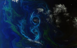 Algae Bloom Satelitte figure 8 1920