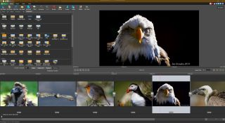 Photostage Slideshow 8