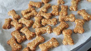 Dog treats on oven sheet made from one of the best diabetic dog treat recipes